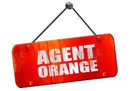 Agent Orange VA Compensation